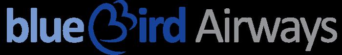 בלו בירד - לוגו