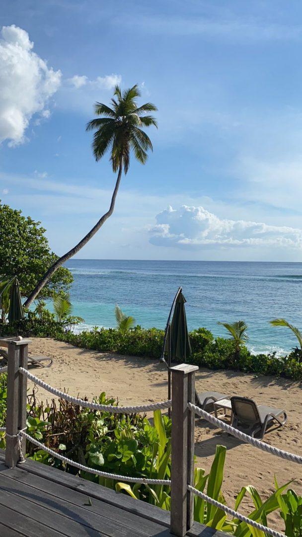 החוף של מלון הדאבל טרי הילטון סיישל