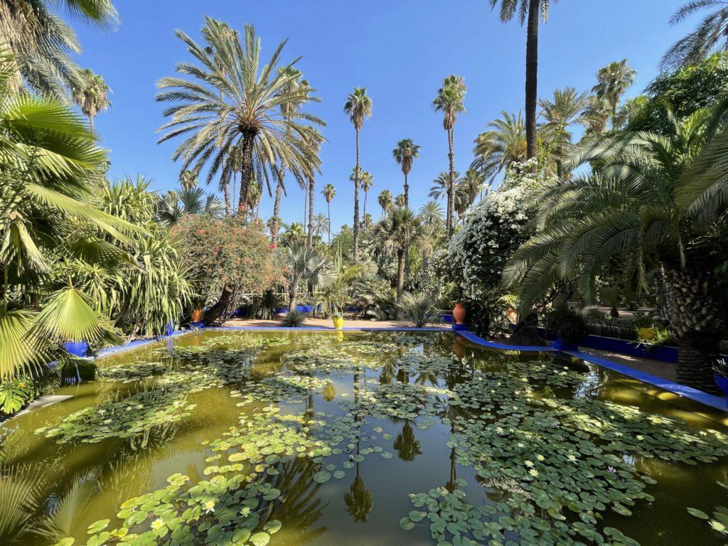 הגנים הבוטניים Majorelle Garden